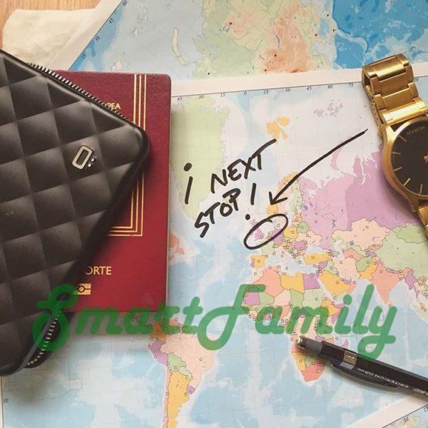 кошелек для паспорта стеганный Quilted 3