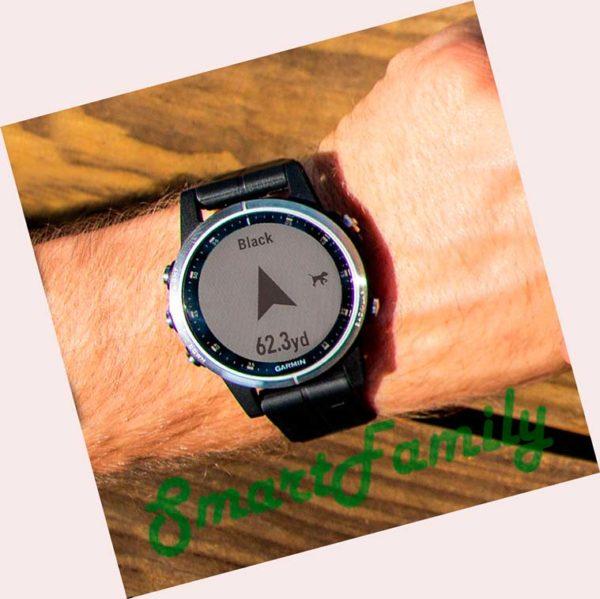 FENIX 5S PLUS черные на руке