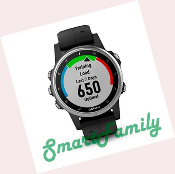 Garmin FENIX 5S PLUS черные (2)