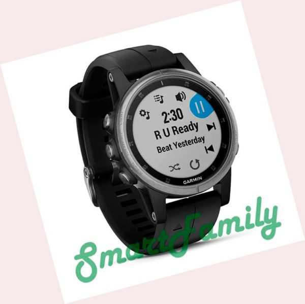 Garmin FENIX 5S PLUS черные